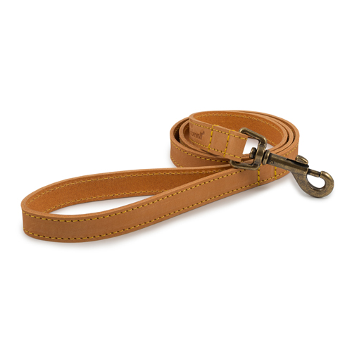 Leather Leads