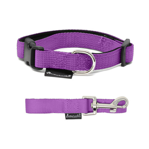 Dog Collars and Leads Sets