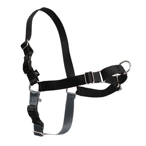 Training Harnesses