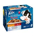 Felix As Good As It Looks Senior Cat Food Doubly Delicious Meat Selection 12x100g