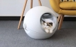 New Pet Product Arrival at AllPetSolutions - Modern Cat Litter Box