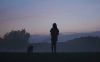 Walking Your Dog Safely at Night